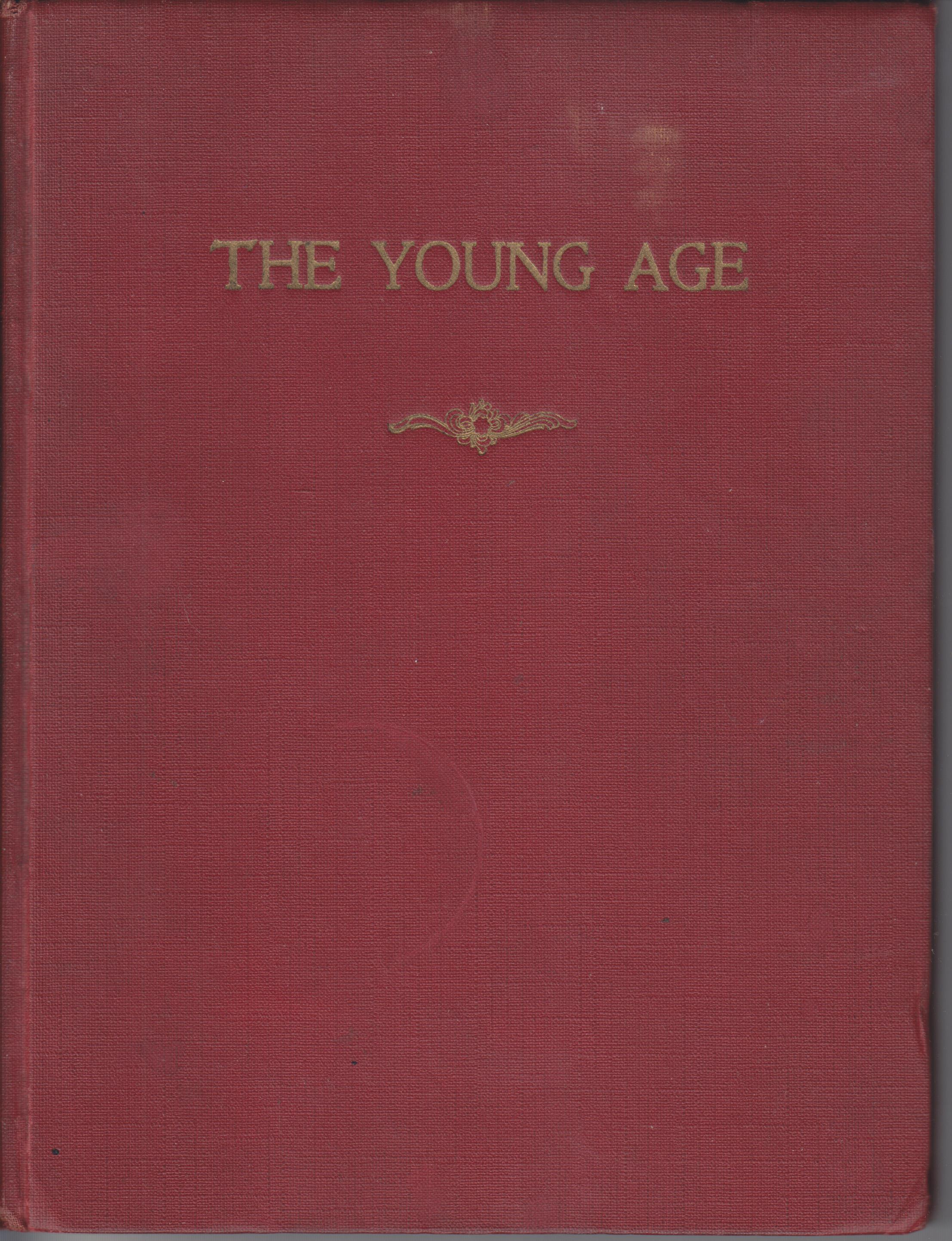 Image for The Young Age. A Quarterly Illustrated Magazine Devoted to Young People Movements. Volume II (April, 1916 - Christmas, 1916 (4 issues)